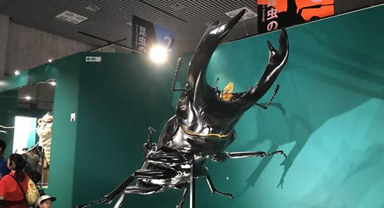 うえの昆虫展