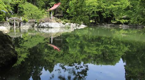糸魚川 花めぐり
